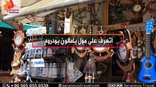 اتعرف على سوق جيكيجيلار اماسرا